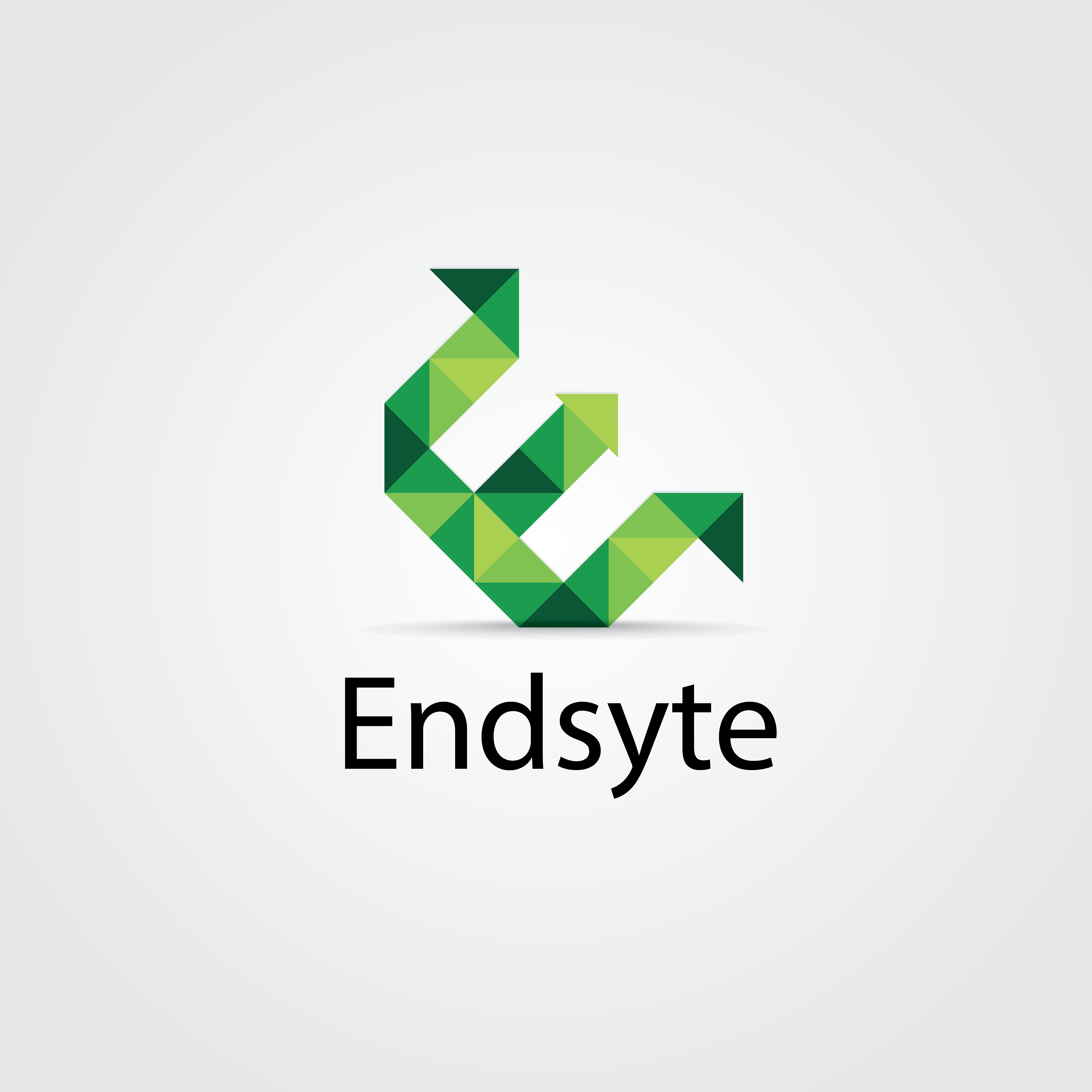 Endsyte's logo